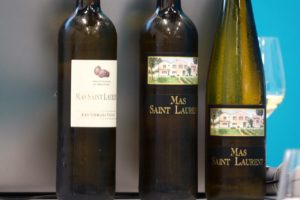 Cépages oubliés et vins de Thau