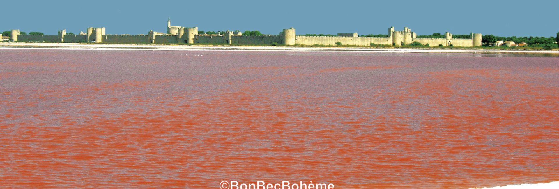 Aigues-Mortes Camargue fleur de sel