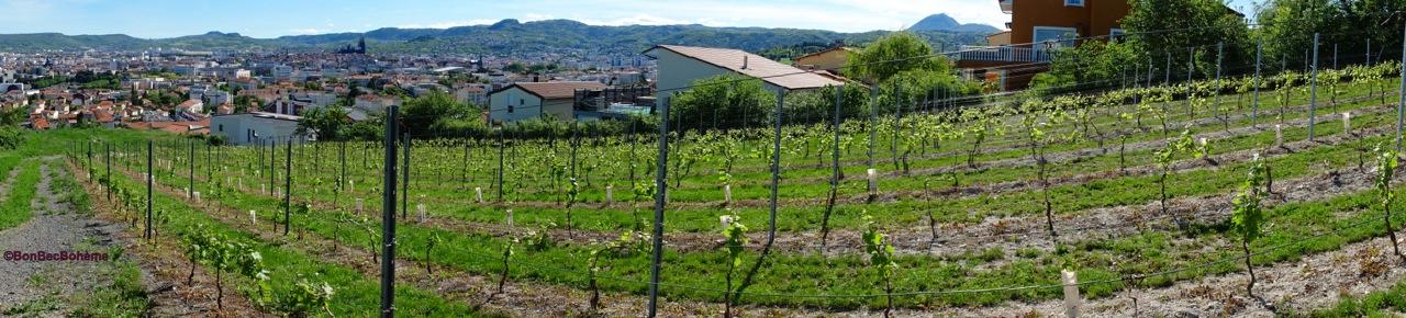 Le clos des amoureux, AOC côtes-d'Auvergne, cru chanturgue