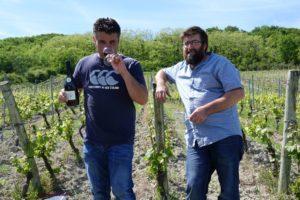vignoble AOC côtes-d'Auvergne Chateaugay