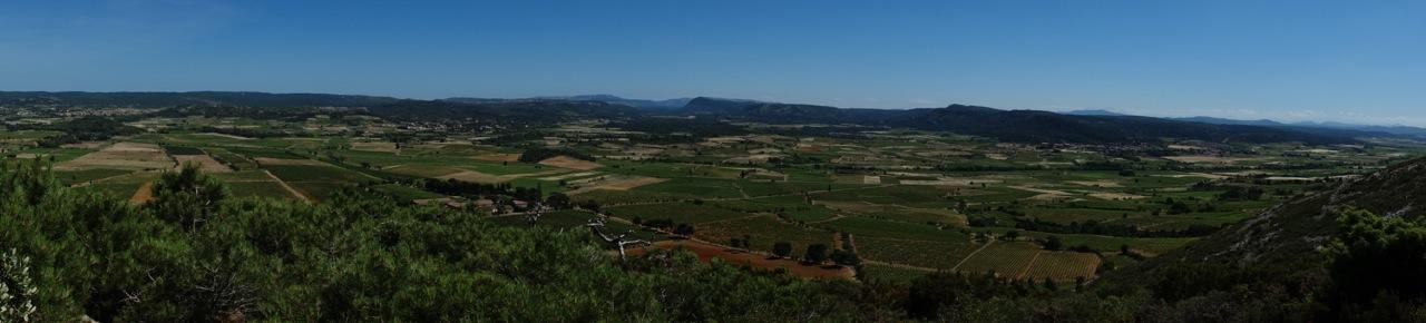 Le paysage viticole du haut du massif du Pinada, en Corbières-Boutenac