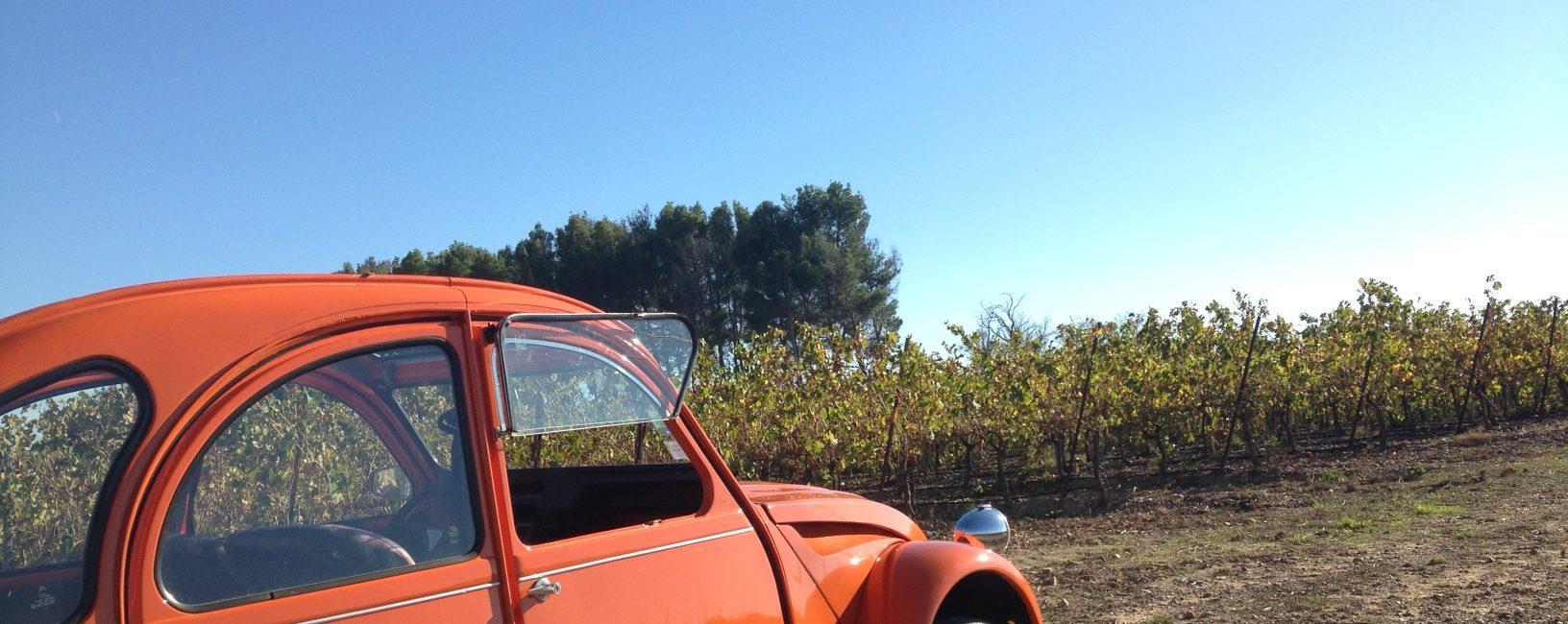 La deuche dans les vignobles de Foncalieu, du Minervois