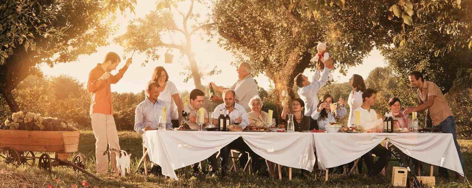 Domaine autrichien producteur de vin bio