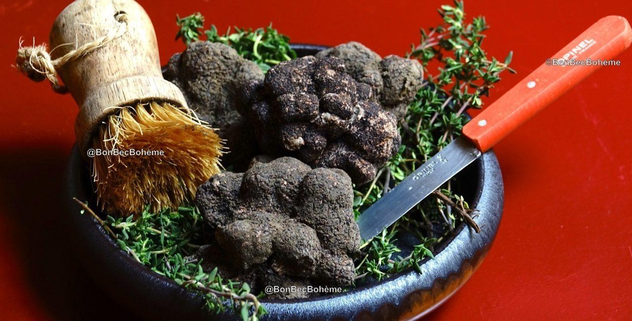 La truffe noire melanosporum